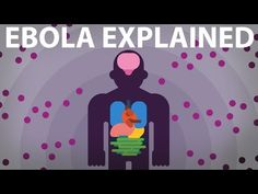 Kurzgesagt | The Ebola Virus Explained — How Your Body Fights For Survival | Educational YouTube channel!