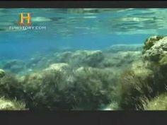 La historia de la tierra 7 Estromatolitos  (al parecer).!