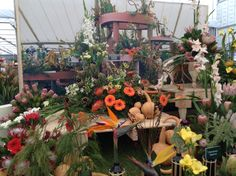 SA Exhibit at the Chelsea Floer Show