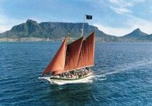 Three to 4 hour cruise on our whale-watching vessel Condor. Whale Watching Season, Boat Companies, V&a Waterfront, Best Boats, Charter Boat, Family Cruise, Cruise Travel, Cape Town, Coastal