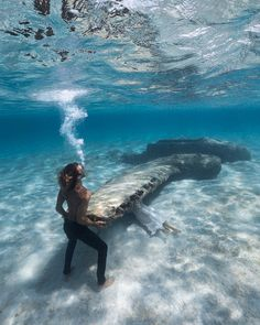 Photography Discover Breathtaking Underwater Photography By André Musgrove Under The Water, Under The Sea, Underwater Creatures, Underwater Photos, Underwater Photography, Underwater Shipwreck, Street Photography, Landscape Photography, Nature Photography