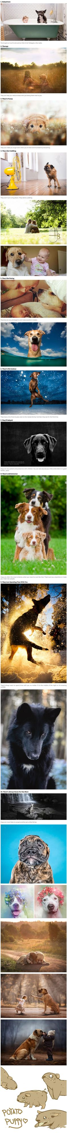 Dogs: More than just cuteness overload