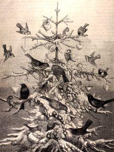 "michaelmoonsbookshop: "" The Birds' Christmas Tree 19th century illustration """