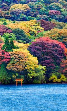 Ashi Lake, JapanLA NATURALEZA SE VISTE DE COLORES                                                                                                                                                                                 More