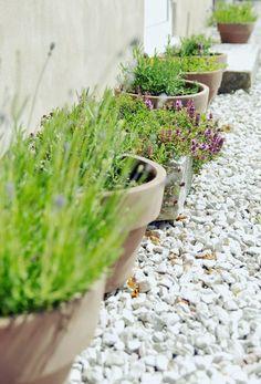 Tarja's Snowland: Gotland feelings! Garden pottery, scandinavian garden, lavender
