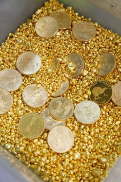 pure Fine Gold granules with pure gold minted coins. To veiw more of avalible bullion products see here Mint Coins, Silver Coins, Gold Bullion Bars, I Love Gold, Gold Everything, Gold Reserve, Gold Prospecting, Gold Money, Gold Aesthetic