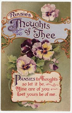 Vintage Postcard Thoughts of Thee   Flickr - Photo Sharing!