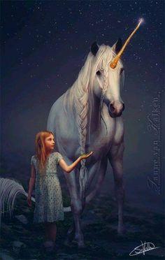 Unicorn Stallion and His Virgin