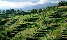 Book cheap nepal tour with paradise unexplored. For more information visit : http://www.paradiseunexplored.com/nepal-tour.html