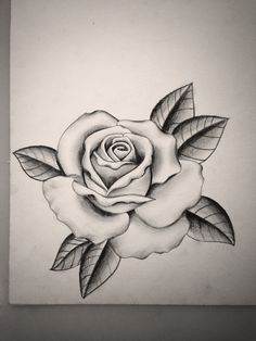 like this rose too