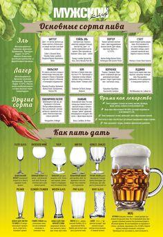 Сорта пива