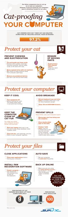 Cat-proofing your computer