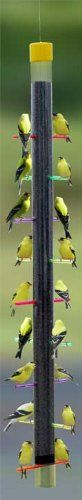 Special Offers - 38  Tall Rainbow Finch Feeder with 18 Colorful Perching Stations - In stock & Free Shipping. You can save more money! Check It (April 18 2016 at 04:59PM) >> http://birdhouseusa.net/38-tall-rainbow-finch-feeder-with-18-colorful-perching-stations/