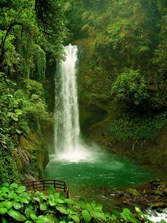 La Paz Waterfall, hidden in the rainforest of Costa Rica- I've been here!! I have a picture almost the same as this!! It's in the La Paz Waterfall Gardens, so it's not all that hidden. There's nice easy paths right to it! And some pretty bridges too! :)