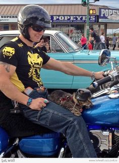 Safety first...his cat is wearing a helmet...