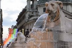 Salvatore Clemente: Fotografie: Piazza del Popolo - Roma 2013