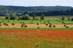 Magnifique paysage vers Lussan Beaux Villages, Provence, Golf Courses, Photos, Tourism, Landscape, Pictures, Provence France, Aix En Provence