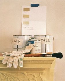 Paint a Room - Martha Stewart Home & Garden
