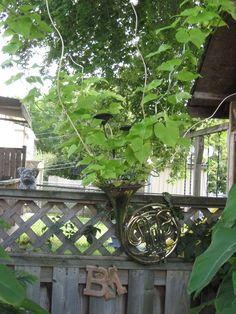 French Horn bursting forth with music....made of plants... FRENCH HORN IN THE GARDEN.