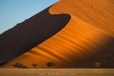 Dune Scapes by Erez Marom - Photo 86843277 - 500px