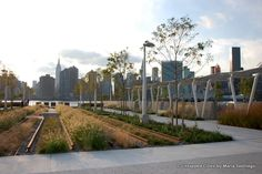 Hunters Point South Park-Long Island City-Queens-NYC-Gantry State Park-027