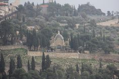 """From Temple Mount looking back at the Mt. of Olives. The church is the Church of  Tears, shaped like a tear drop. It is hear that Jesus cried out for Jerusalem. Matthew 23:37 and Luke 13:34. """"....I wanted to gather your children together, just as a hen gathers her brood under her wings, and you would not have it."""""""
