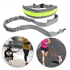 Tuff Mutt Hands Free Dog Leash for Running, Walking, Hiking, Durable Dual-Handle Bungee Leash is 4 Feet Long with Reflective Stitching, and an Adjustable Waist Belt That Fits up to 42 Inch Waist Dog Training School, Best Dog Training, Pet Dogs, Pets, Dog Items, Dog Leash, Dog Accessories, Dog Walking, Dog Care