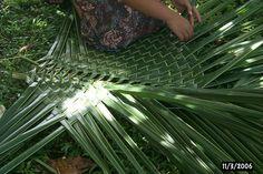 weaving a palm frond mat