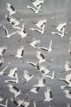 lotfi | printed silk fabric, cranes