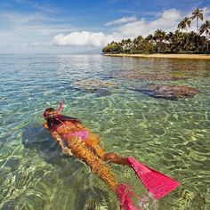 The diversity of marine life in Maui is second to none. A calm sheltered cove is an ideal spot for snorkeling! #Hawaii #maui #kapalua #vacationrental #familyvacation #islandlife