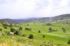 Agios Tyhonas village