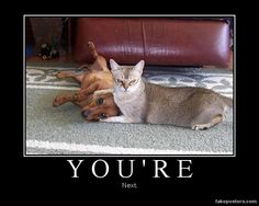 You're - Demotivational Poster