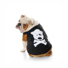 Miles thinks he would look like a badass in this dog and crossbones tee. I agree.