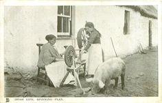 Irish Spinning Flax - my ancestors did this.
