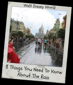 Disney World controls many things, but they can't control mother nature. Here are 8 things you need to know about rain at Walt Disney World.