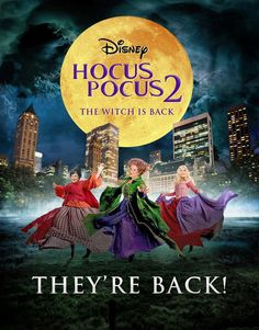 Hocus Pocus is apparently delivering a sequel in 2016.   The Sanderson Sisters…