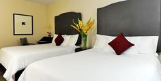 10 Surprisingly Affordable Hotels in New York City Nyc Hotels, New York Hotels, Affordable Hotels, Cheap Hotels, Jefferson Hotel, New Years 2016, Washington, Travel Usa, New York City
