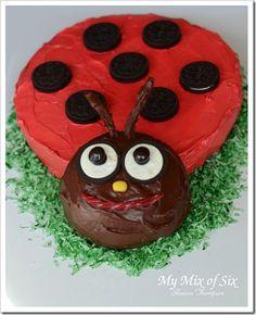 Birthday cake  ladybug
