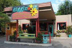 For cool, funky stuff for your yard, your ear lobes, your spirit. check out Diggin' It, at 507 N. Tennessee in the old McKinney Greyhound bus dept. You'll be glad you did! Tennessee, Bus Travel, Travel Tips, Mckinney Texas, Bus Station, Pet Grooming, Places Ive Been, Flora, Old Things