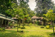 Khlong Phlu, Koh Chang | #Thailand *bildbomb* #travel #kohchang #paradice #djungle #kkhlongphlu