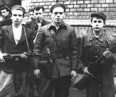 """Képtalálat a következőre: """"1956 hősei"""" Che Guevara, Google"""