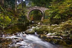Tollymore Forest Park- Nordirlandtour