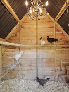 one day my girls might let me convert their playhouse to a coop...like this!