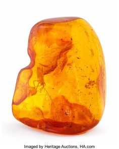 Heritage Auctions | Amber with Inclusions. Succinite. Baltic Coast. Russia. 1.57 x1.28 x 0.61 inches (3.99 x 3.24 x 1.54 cm). ...