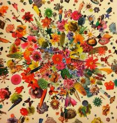 mandala pattern made with flowers art