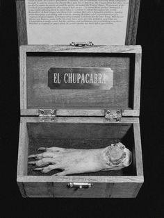 Mummified chupacabra's paw