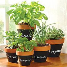 If you want to grow herbs indoor, you can do so with a terracotta window herb garden. Learn how to make one with Blain's Farm & Fleet.