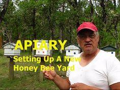 APIARY - Setting Up A New Honey Bee Yard