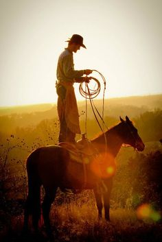 For one to fly, one needs only to take the reins. ~Melissa James