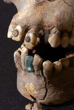 Burial of a woman at Teotihuacan with a jadeite tooth that was cemented or attached with fiber to her mandible. 350 to 450 AD. - Imgur